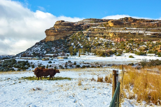 Occasional snow at Roodepoort Farm Clarens