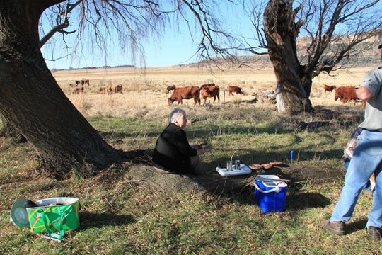 Picnic on Roodepoort Farm, Clarens